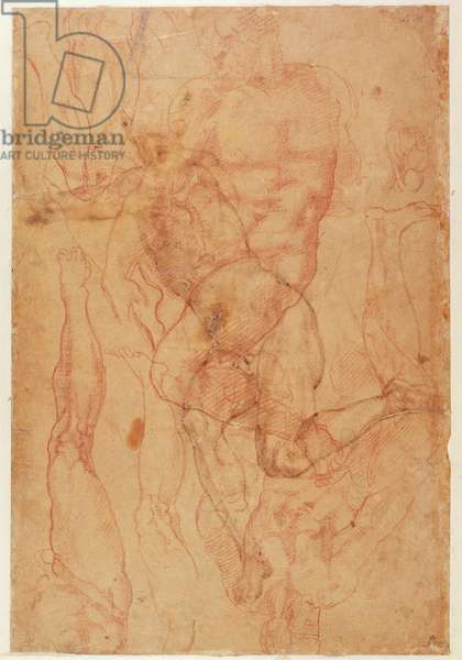 Figure Study (red chalk on paper)