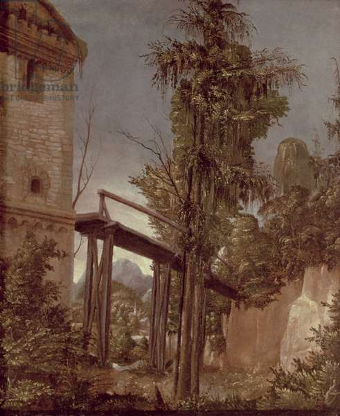 Landscape with a Footbridge, c.1518-20 (oil on panel)