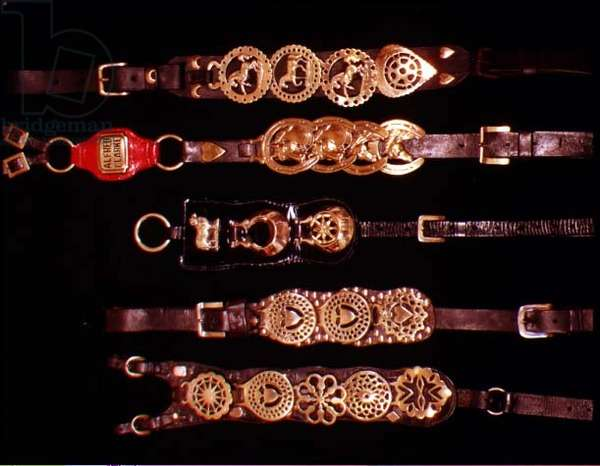 Collection of horse brasses displayed on martingales, 19th century