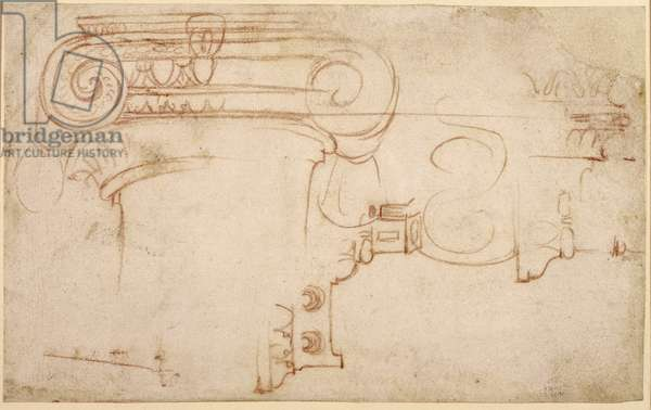 Study of an Ionic capital (red chalk on paper) (recto)