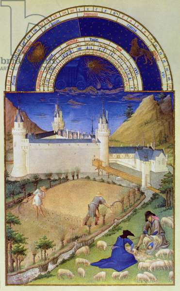 Fascimile of July: Harvesting and Sheep Shearing, from the 'Tres Riches Heures du Duc de Berry' (for original see 8439)
