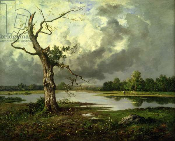 French River Landscape (oil on canvas)