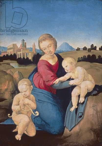 The Esterhazy Madonna, c.1507-08 (tempera & oil on poplar panel)