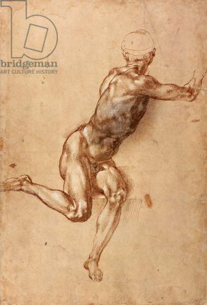A seated male nude twisting around, c.1505 (pen & ink with wash on paper)