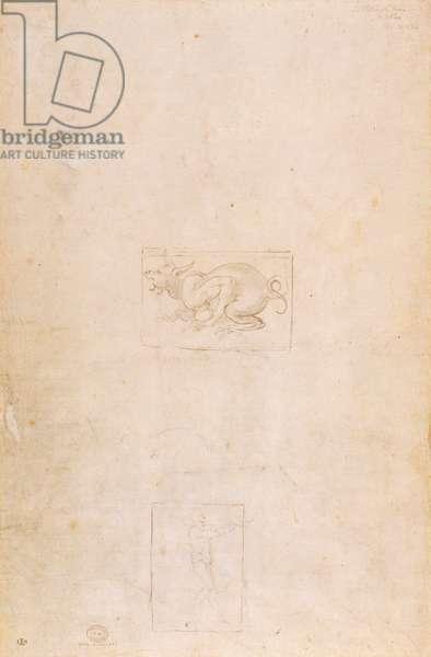 W.54 Study of a dragon
