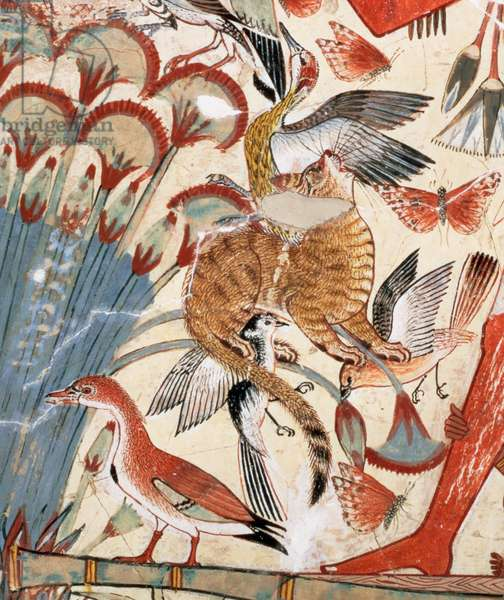 Nebamun hunting in the marshes with his wife an daughter, part of a wall painting from the tomb-chapel of Nebamun, Thebes, New Kingdom, c.1350 BC (painted plaster) (detail of 3748)