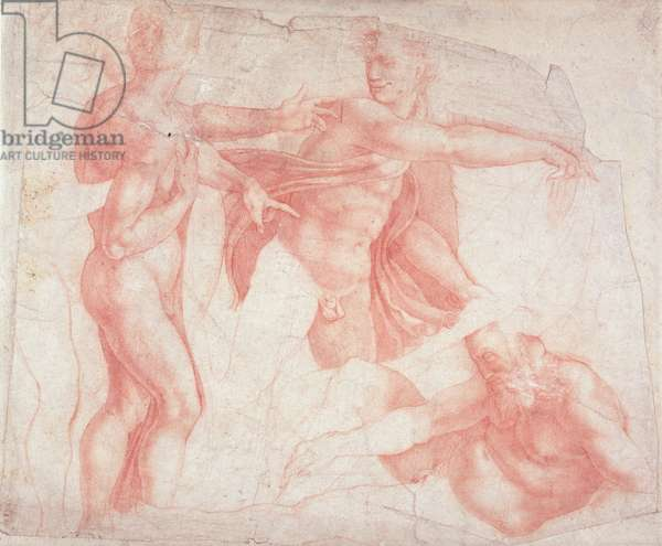Studies of Male Nudes (red chalk on paper)
