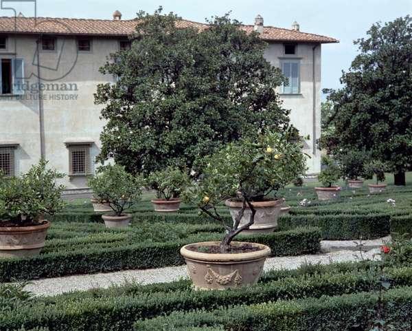 Exterior view of the villa and garden (photo)