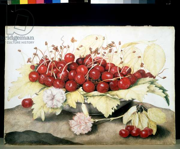 Cherries and eyelets