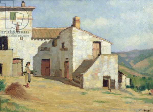 Peasant woman on the farm (oil on canvas)