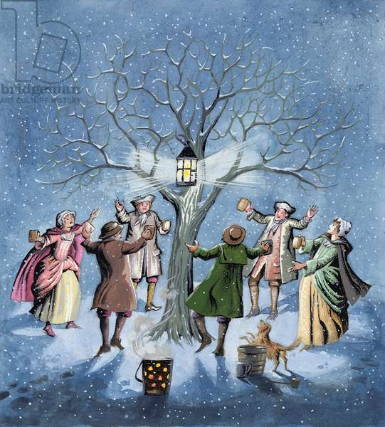Wassailing the Apple Trees, illustrating the Devonshire custom of encouraging the yield of good fruit on Twelfth Night, 1997 (w/c on paper)
