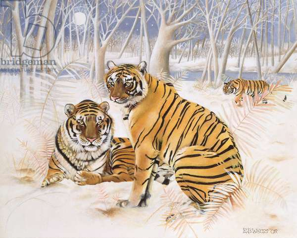Tigers in the Snow, 2005 (acrylic on canvas)