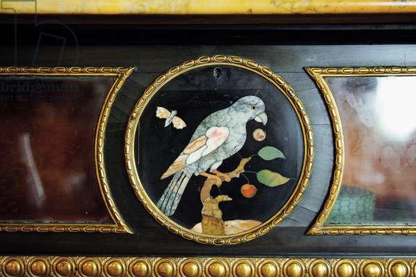 Detail of a Cabinet depicting a bird (pietra dura)