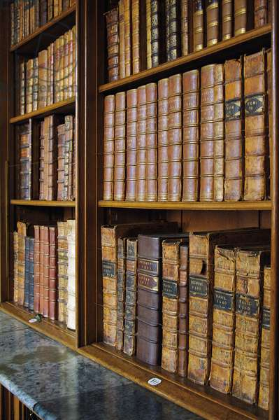 Shelves of books in the Library, Belvoir Castle (photo)