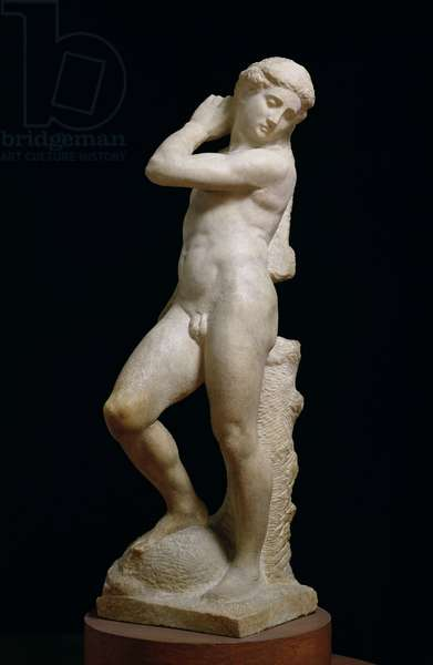 Apollo, or David, c.1530 (marble) (see also 79843 & 230332)