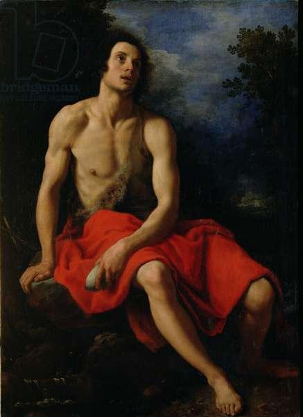 St. John the Baptist in the Desert (oil on panel)