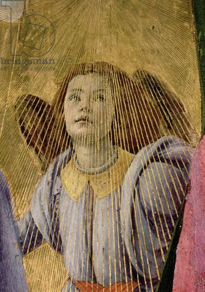 Angel, from the 'Coronation of the Virgin', c.1488-90 (tempera on panel) (detail of 44363)