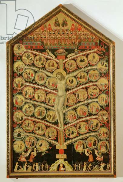 The Tree of Life, c.1310 (tempera on panel) (for detail see 62294)