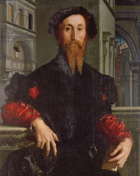 Portrait of Signor Panciatichi Bartolomeo, c.1540 (oil on panel)