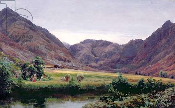 Haydays (oil on canvas)