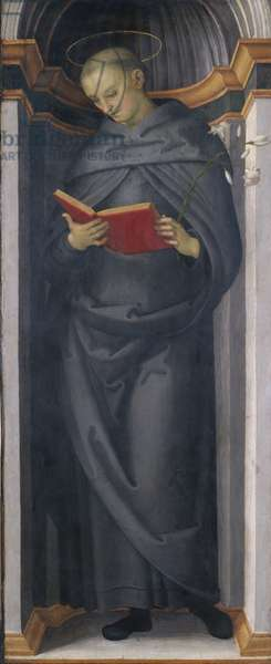 The Blessed Philip Benitius, c.1505-6 (tempera on poplar wood)