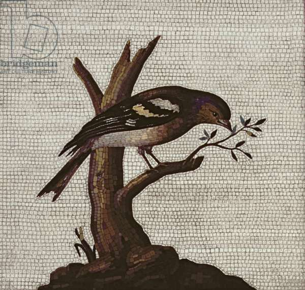 Roman mosaic of a bird in a tree