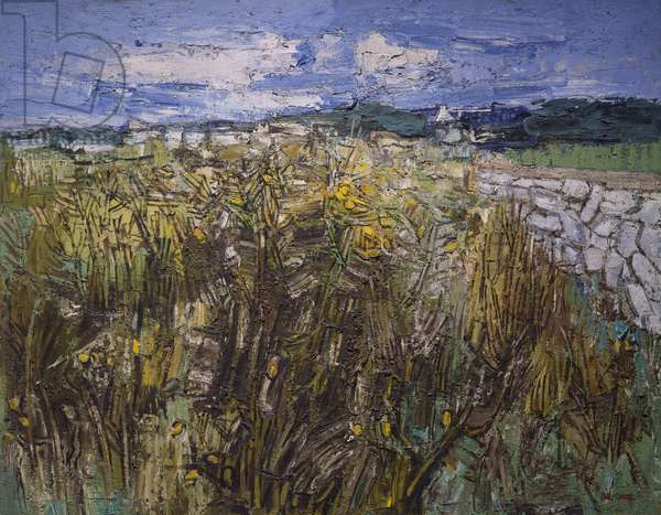 Gorse and Bracken, Audierne (oil on hardboard)