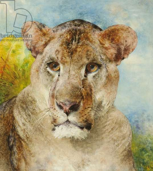 Head of a Lioness, 1878 (oil on canvas)