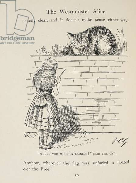 """Alice in a fog. """"Would you mind explaining"""", said the Cat."""