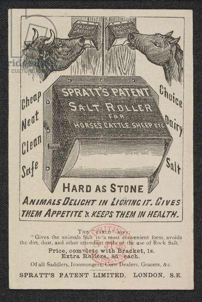 Advert for Spratt's Meat Fibrine Dog Cakes, reverse side, 1892 (engraving)