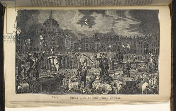 Plate 1. Night view of Smithfield Market, from 'The animals' friend, or, The progress of humanity', 1833 (engraving)