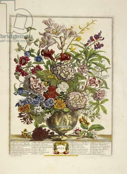 Various flowers (July)