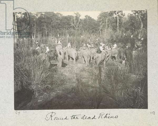Round the Dead Rhino, 'Curzon Collection: Album of snapshots, principally relating to Lord Curzon's time as Viceroy of India', April 1900 (b/w photo)