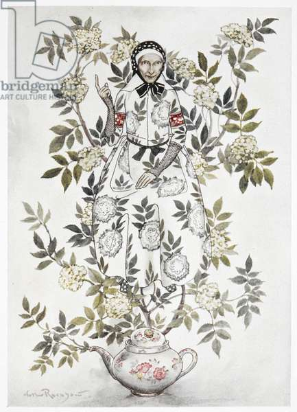 In the midst of a tree sat a kindly looking woman'. A large plant growing out of a teapot. An old woman among the branches. A colour illustration for 'Elder-tree mother'.