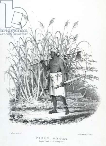 Field negro, illustration from 'West India scenery', 1836 (litho)