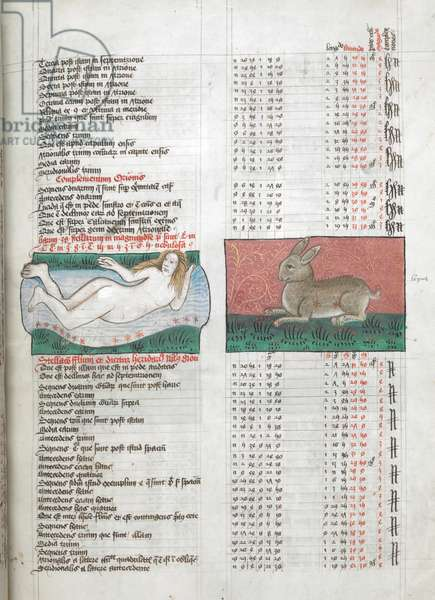 Miniatures of Fluvius (River), depicted as a nude woman in a stream, and Lepus (Rabbit), in tables from Ptolemy's Almagest, illustration from 'Liber Astronomiae', by Guido Bonatti, 1490 (vellum)