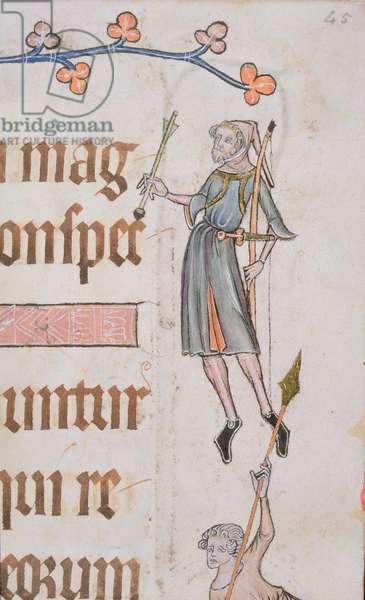 Add 42130 f.45 Border detail of an archer, from the 'Luttrell Psalter', c.1325-35 (vellum)