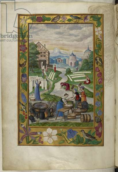 Ms Harley 3469, f.32v Women engaged in laundry, the Fifth Treatise, from 'Splendor Solis' by Salomon Trismosin, 1582 (vellum)