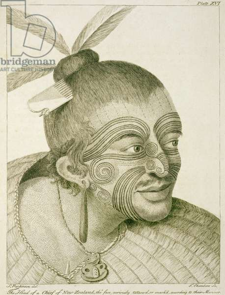 L.R.294.c.7.plate XVI  The Head of a Chief of New Zealand, the face curiously tataowd, or mark'd, according to their manner, 1769