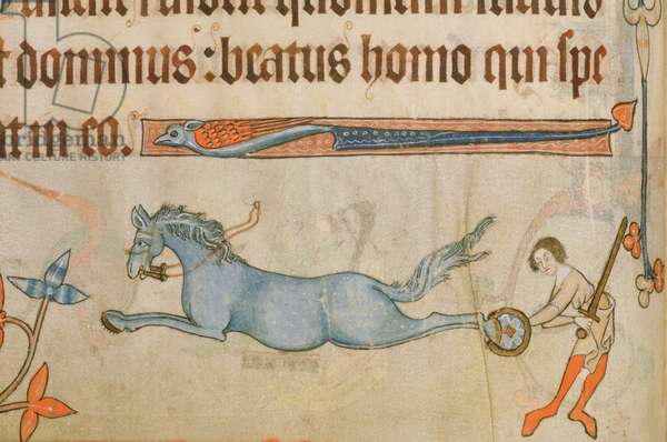 Add 42130 f.63v Border detail of a performing horse practising a flying kick, from the 'Luttrell Psalter', c.1325-35 (vellum)