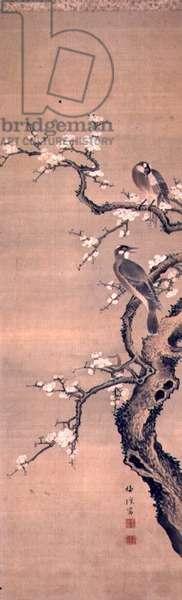 Birds on a snowy plum bough by Muryu