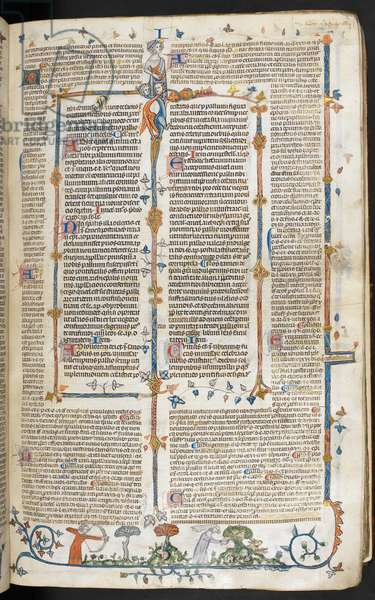 Royal MS 10 f.041r Illustration from the 'Smithfield Decretals' (vellum)