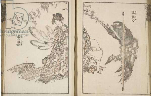 Japanese woman with white fox and monkey