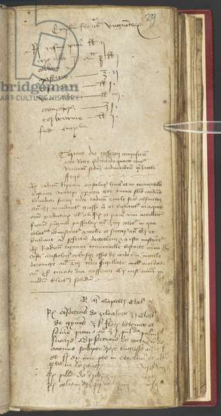Harley 1628 f.29r, Apothecary Book with recipe for theriac, for King Edward IV, c.1483 (vellum)