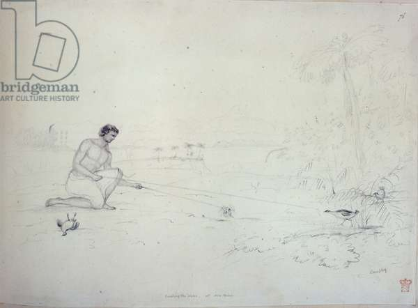 Catching the Weka at Ara Hura, from 'Drawings and Sketches in New Zealand', c.1853 (pencil on paper)