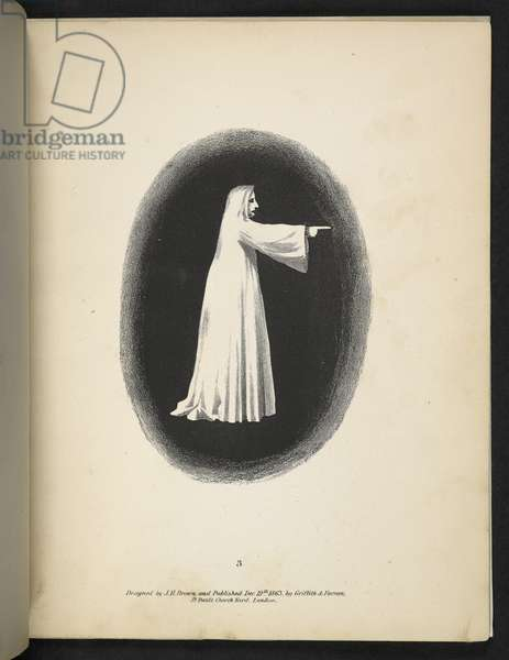 Plate 3. A ghost in white.