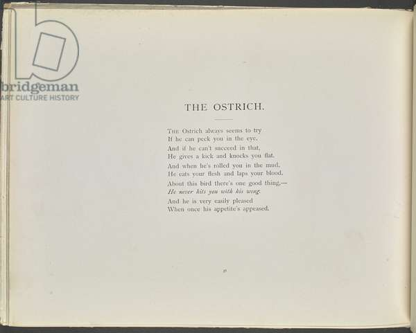 Poem: The ostrich.