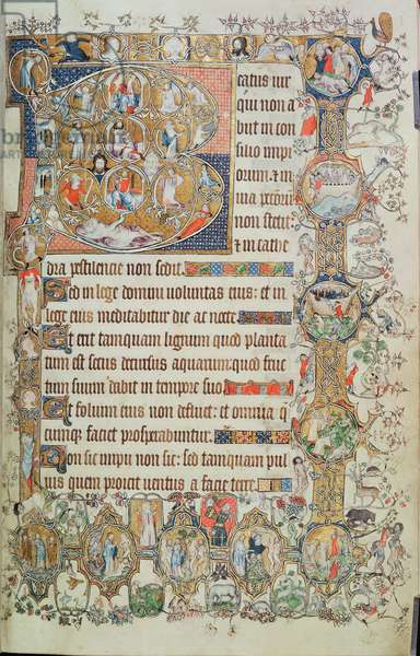 Add 39810 f.7r Historiated initial 'B' with a Tree of Jesse and nine roundels, from the St. Omer Psalter, c.1330-40 (vellum)