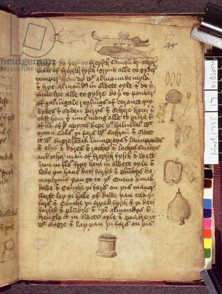 Ms. Harley 1735  Page from a Physician's notebook written in Middle English (vellum)