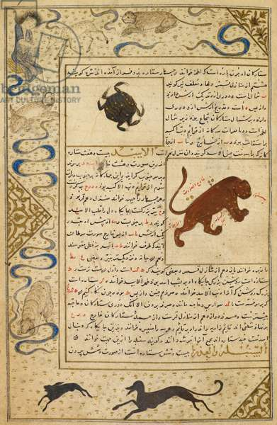 Cancer and Leo. Marginal drawings of Majnun in the desert with the animals, a saluki chasing a hare and a tiger chewing the marginal decoration. Illustrations to a treatise on astrology